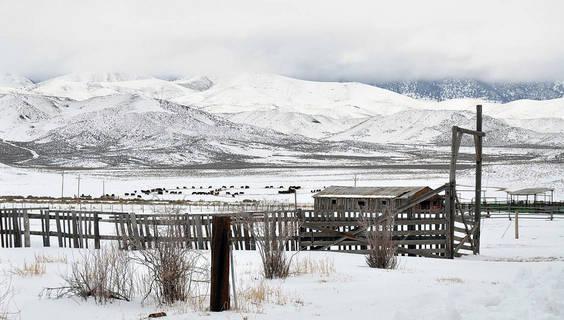 © Nevada Tourism