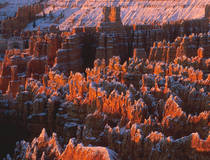Bryce Canyon National Park, Utah.  © Christian Heeb